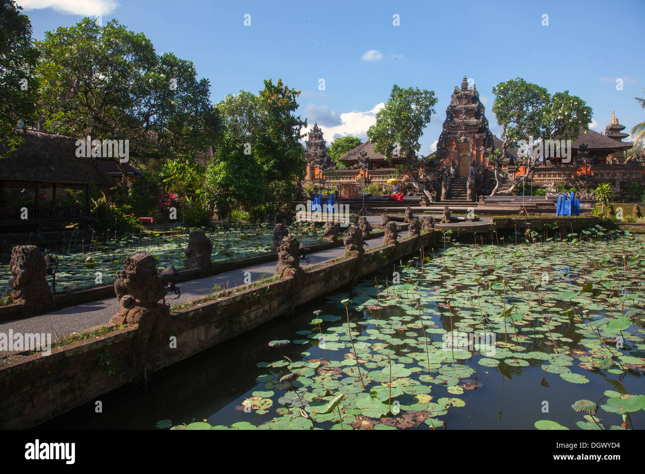 Lotus flower pond garden restaurant ubud bali indonesia for Green garden pool jakarta