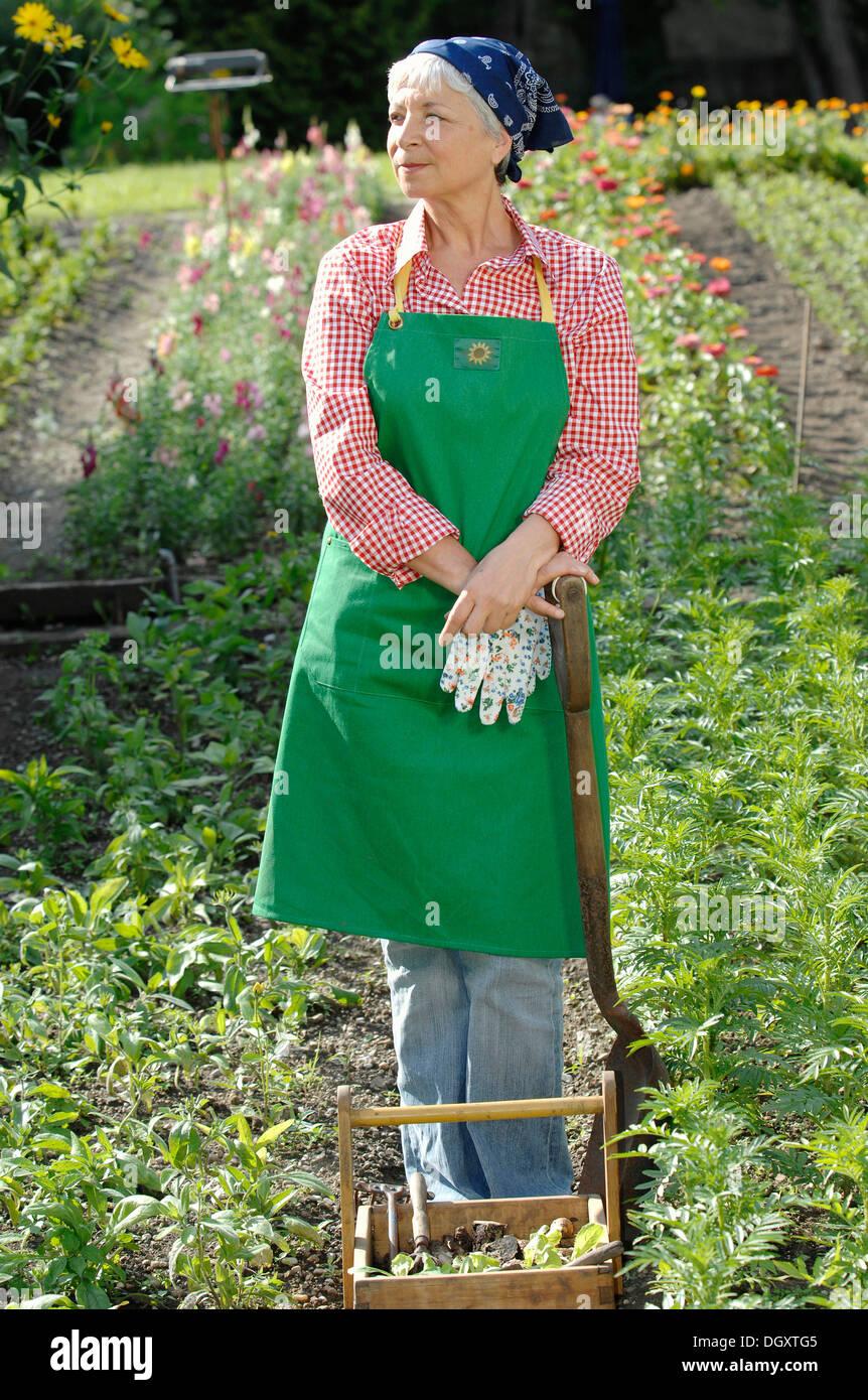 Marvelous Elderly Woman, Gray Haired, 55 65, Wearing Gardening Clothes And Leaning  Against A Spade In A Garden