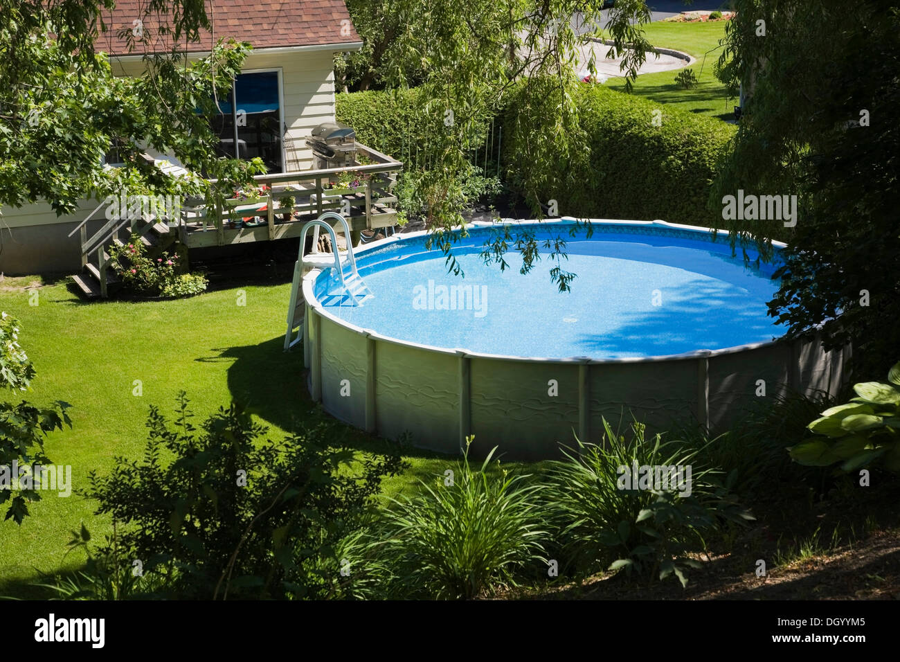 residential backyard with an above ground swimming pool and house