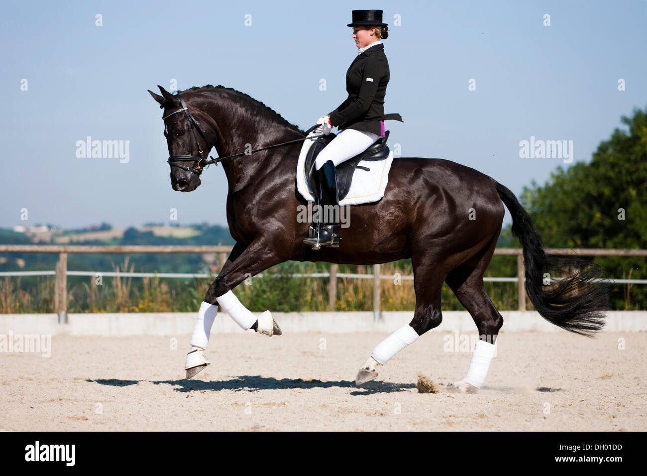 how to ride a galloping horse