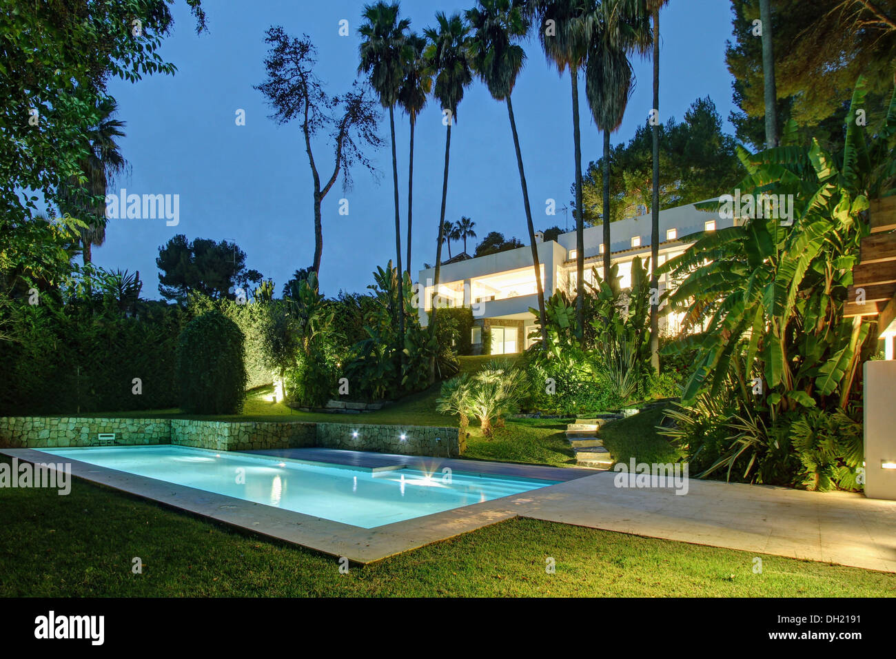 Palm trees beside swimming pool under lit in early evening for Big garden pools