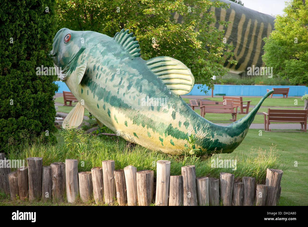Large mouth bass lifelike fish sculpture fresh water for Freshwater fishing hall of fame