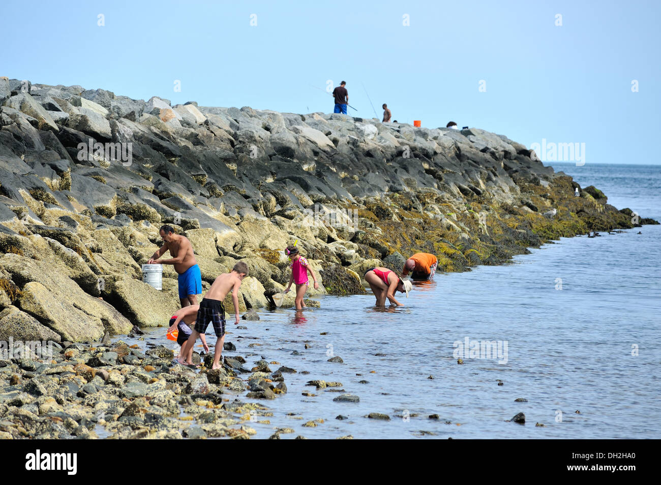 Families gathering mussels and shells at the east end jetty of the families gathering mussels and shells at the east end jetty of the cape cod canal sandwich ma nvjuhfo Choice Image