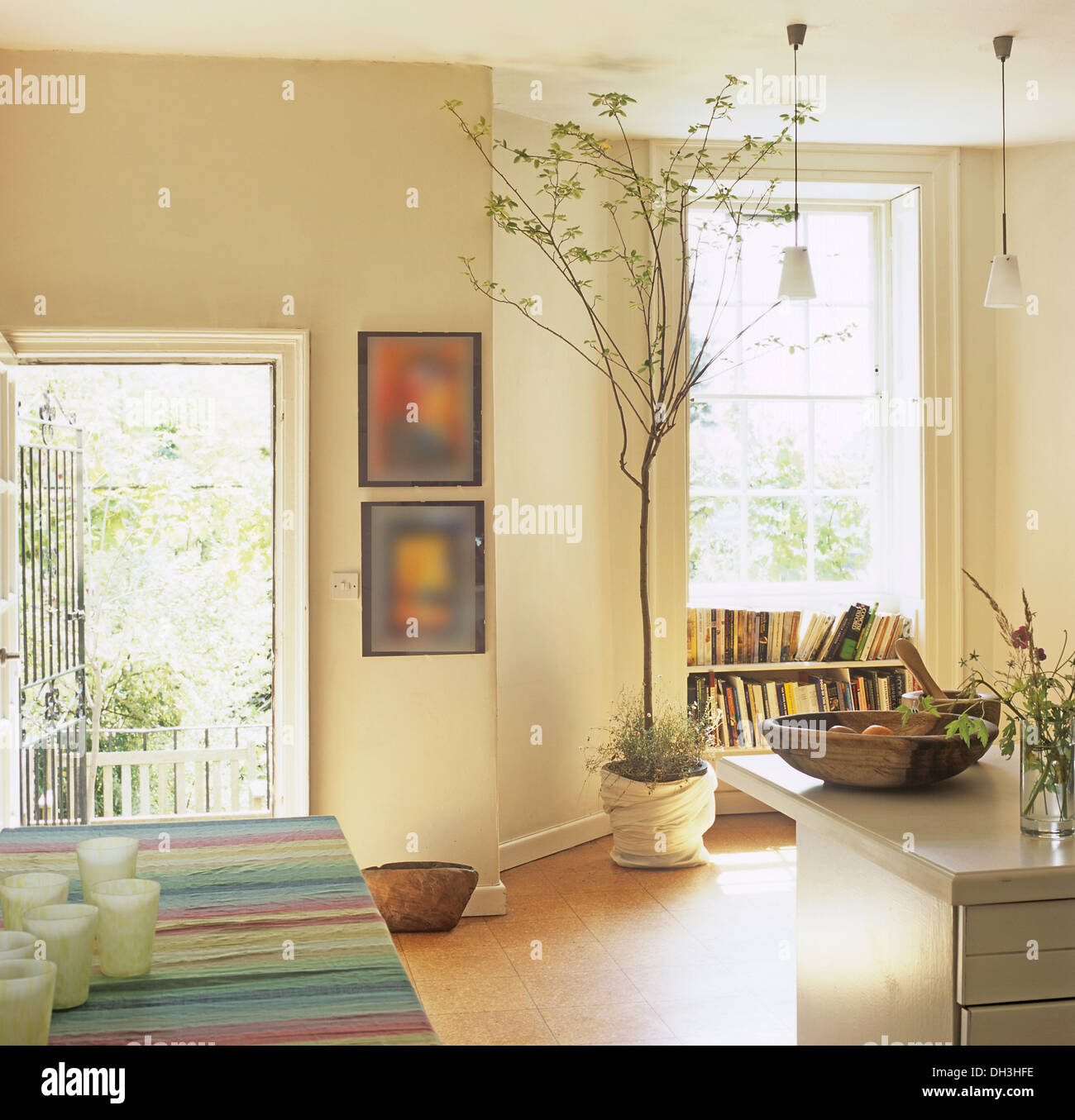 Indoor Tree In Pot Beside Tall Window Kitchen Dining Room With Striped Cloth On Table And Door Open To Garden