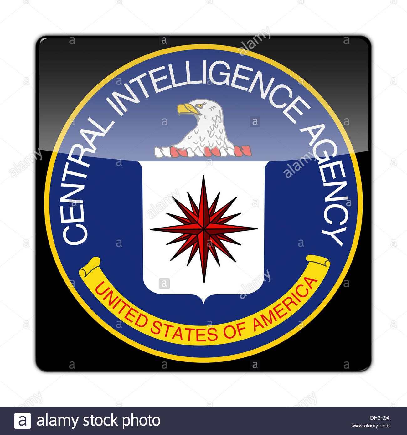 Central intelligence agency cia patch