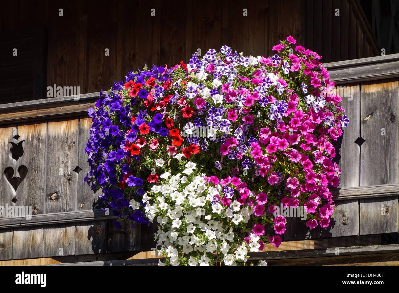 kochel am see kochelsee balkonblumen an einem bauernhaus bayern stock photo 62170431 alamy. Black Bedroom Furniture Sets. Home Design Ideas