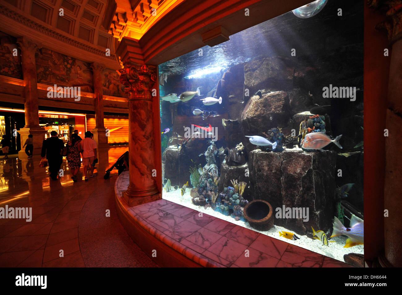 Aquarium forum shops luxury hotel casino caesars for Fish tank las vegas