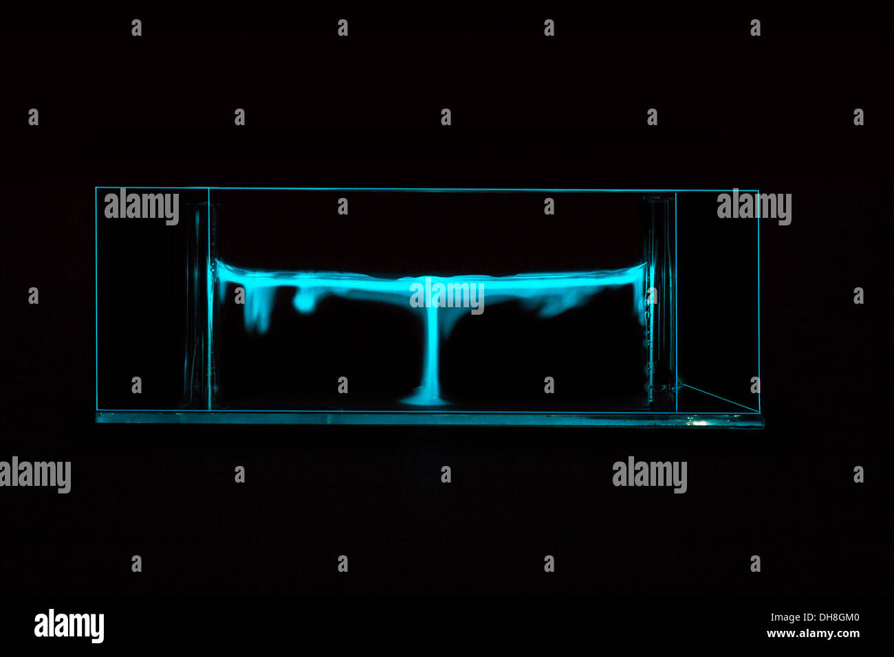 showing glow of bioluminescence convective plumes in a. Black Bedroom Furniture Sets. Home Design Ideas