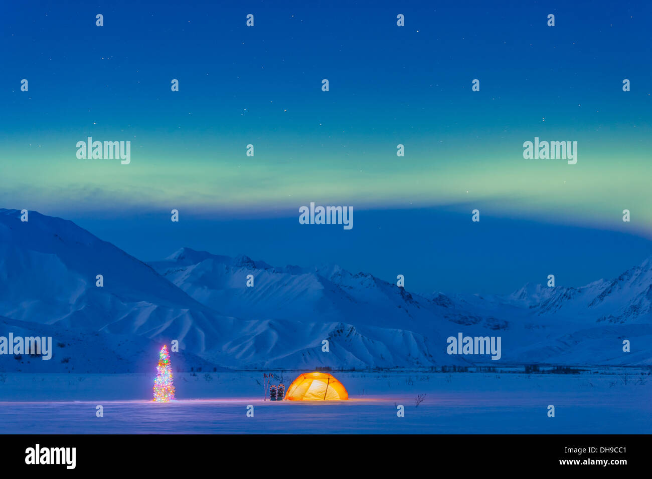Northern Lights Glow In The Sky Above A Backpacking Tent And Lit Christmas Tree At Twilight Alaska Range Isabel Pass  sc 1 st  Alamy & Northern Lights Glow In The Sky Above A Backpacking Tent And Lit ...
