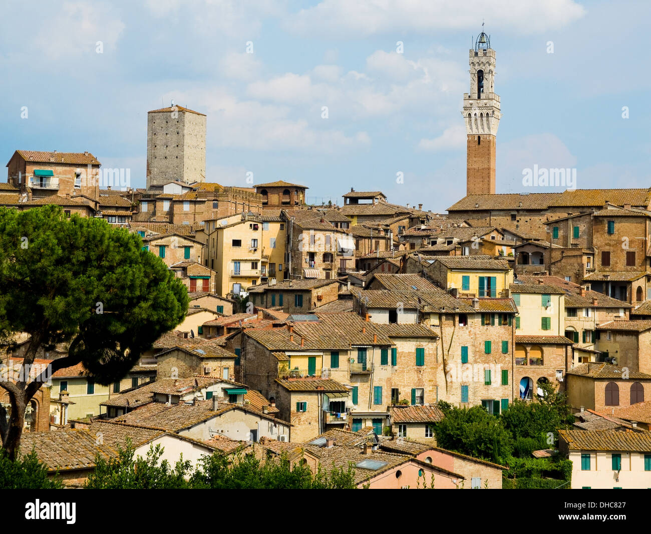 Siena View With Antique Houses And Mangia Tower. Siena, Italy