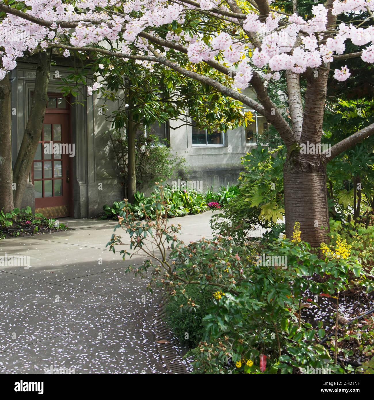 Hiram M. Chittenden Locks And Carl S. English Jr. Botanical Gardens; Seattle,  Washington, United States Of America