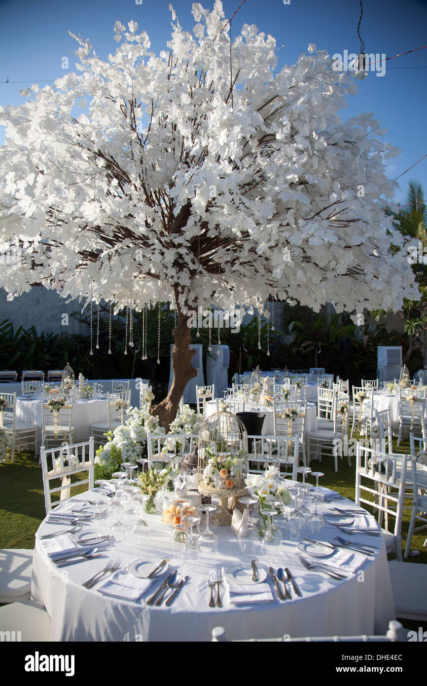 Wedding Reception Decoration Table Chair Trees Eat Eating Plates Utensils Decor Decorative Art Artistic Skillful Design Day