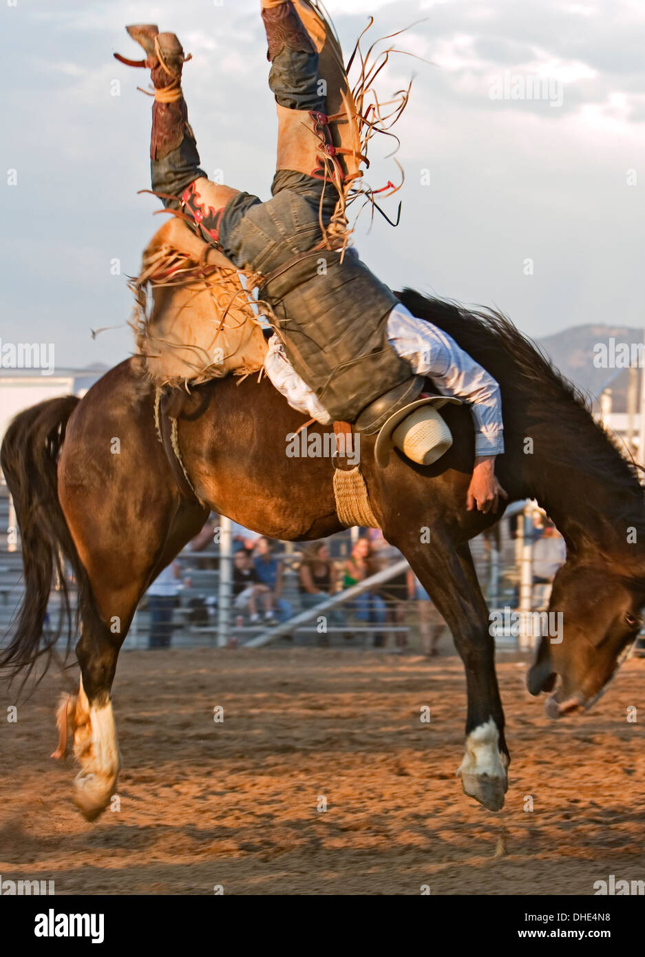 Cowboy Upside Down On Bucking Horse Bareback Riding