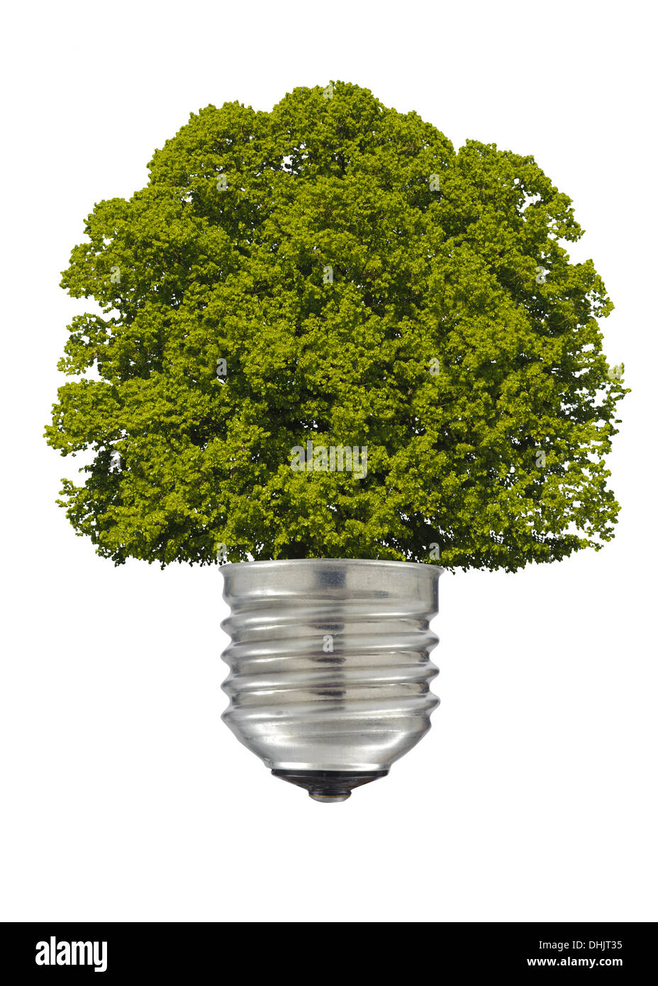 Tree And Electric Lamp As Symbol