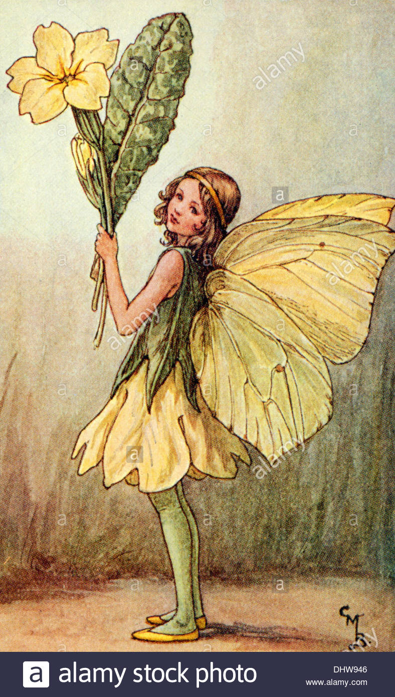 Flower Fairies: Fairyopolis by Cicely Mary Barker (2005, Hardcover)