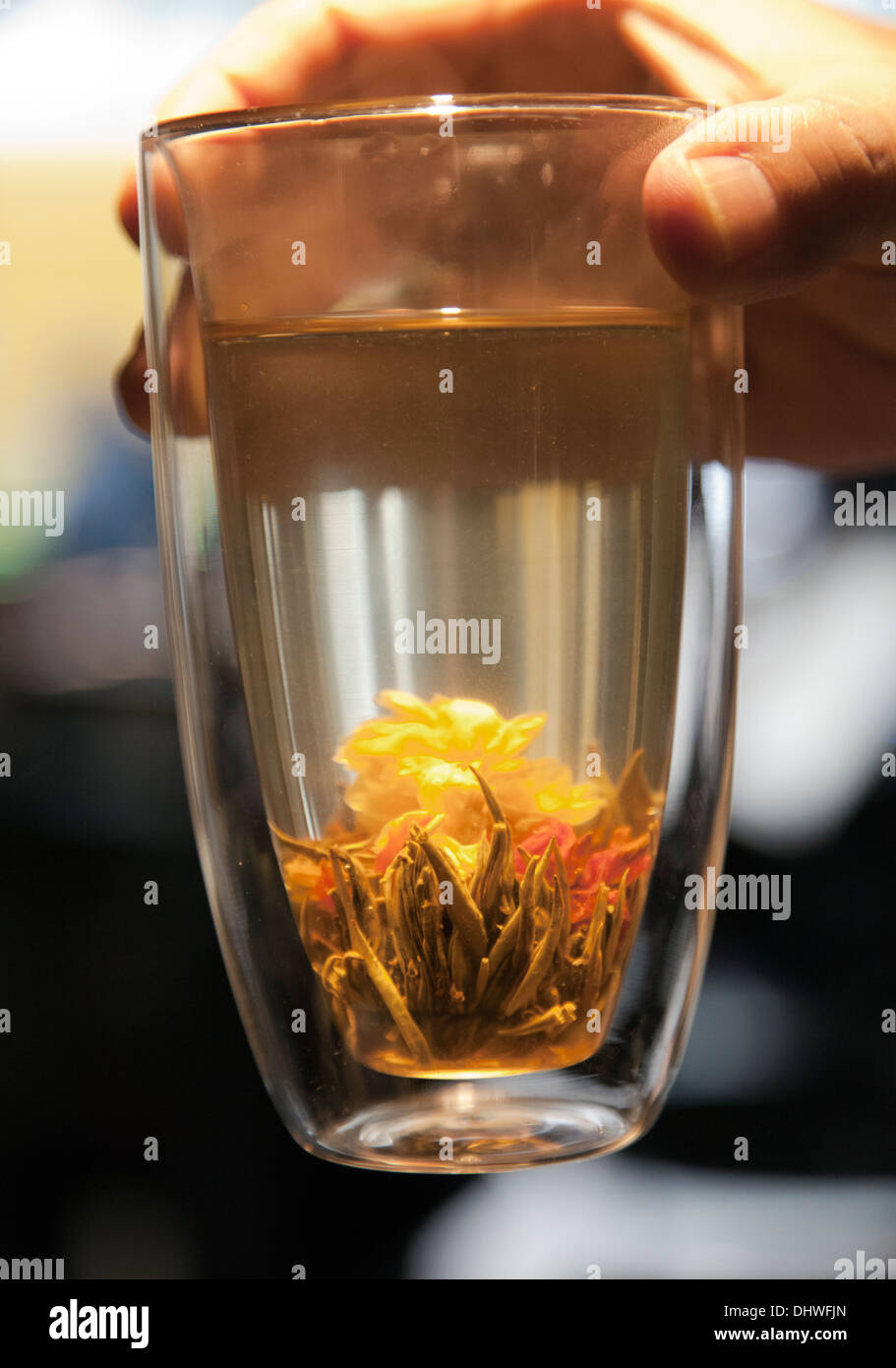 Jasmine Flower Tea in Hot Water Glass at Ping Pong ...