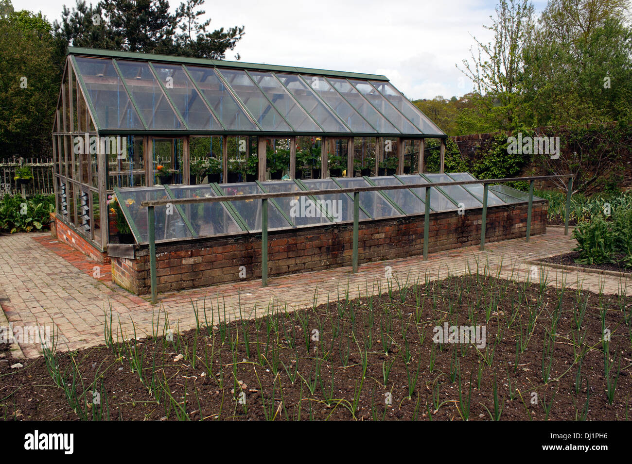 stock photo timber framed domestic greenhouse and cold frame at rhs rosemoor