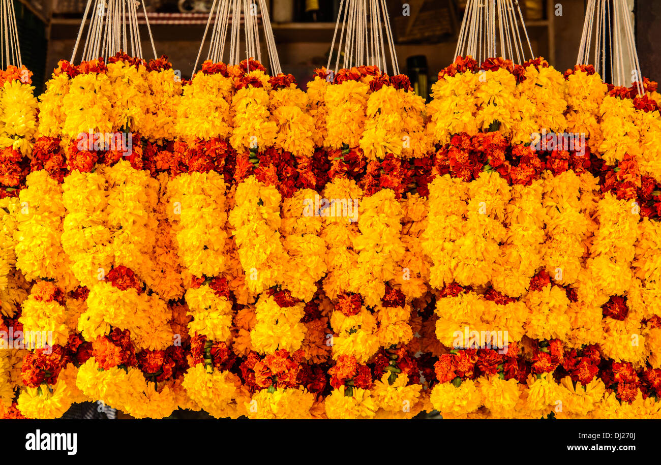Marigold Flowers garlands for sale at Mapusa Market Goa India