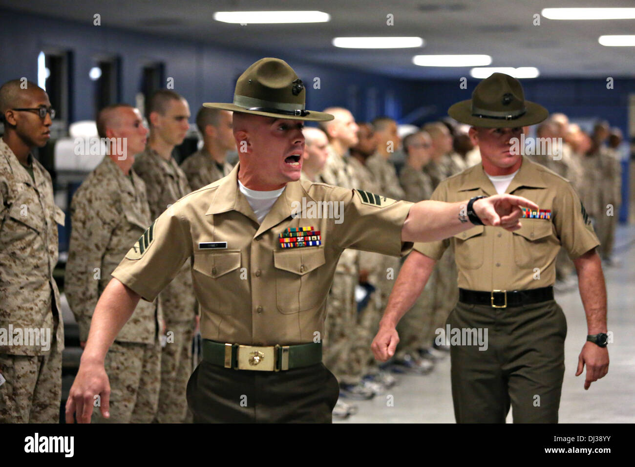 US Marine Corps drill instructors screams at a Marine recruit ...