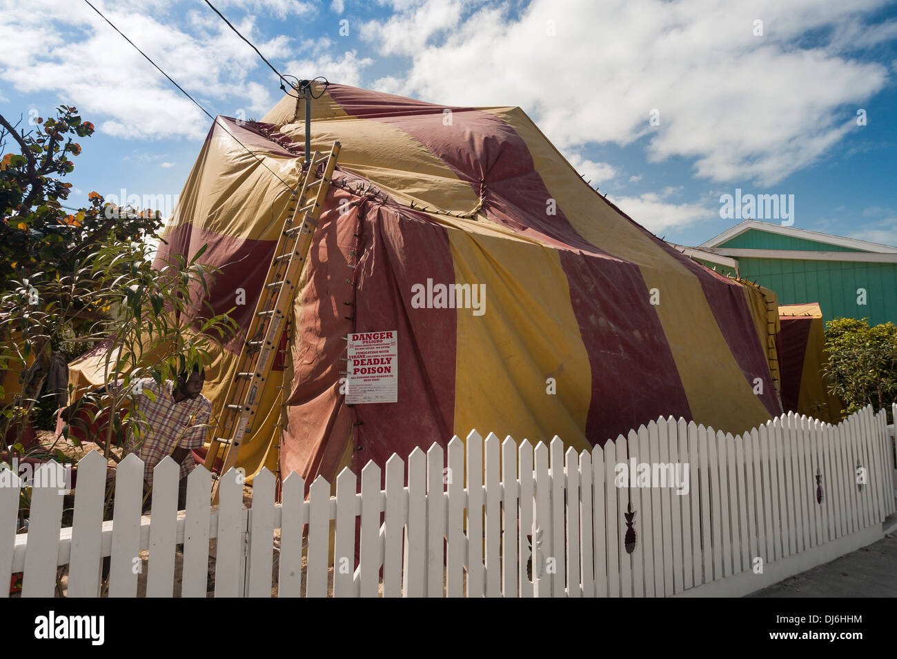 A worker sets up a tent to Fumigate a house. A colourful tent is set up to contain the poison gases used to kill an infestation & A worker sets up a tent to Fumigate a house. A colourful tent is ...