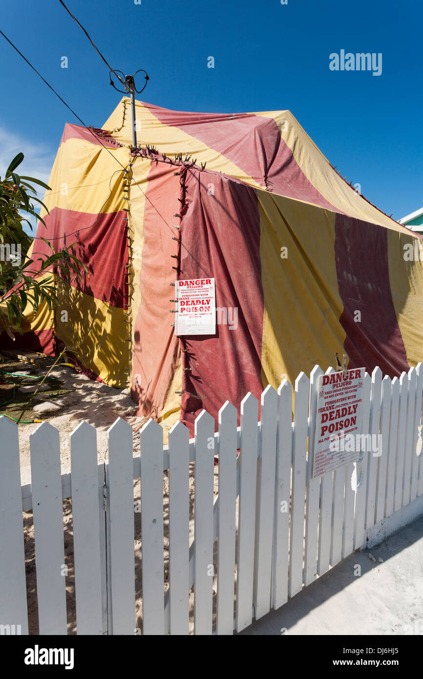 Fumigation of a house. A colourful tent covers a house as it is gassed to kill termites and other pests & Fumigation of a house. A colourful tent covers a house as it is ...