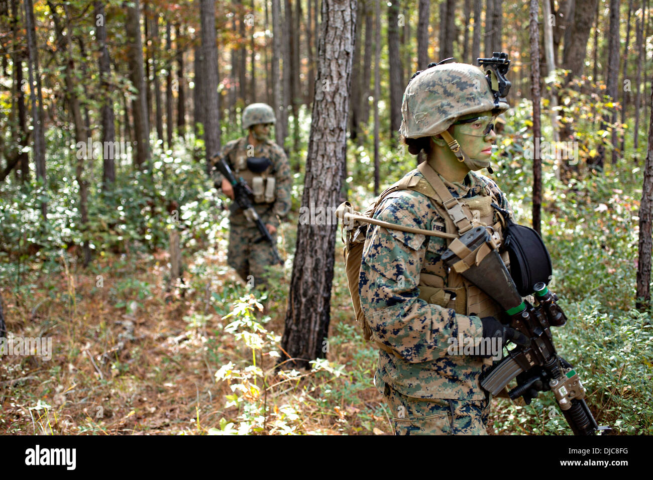 Infantry East Stock Photos & Infantry East Stock Images - Alamy