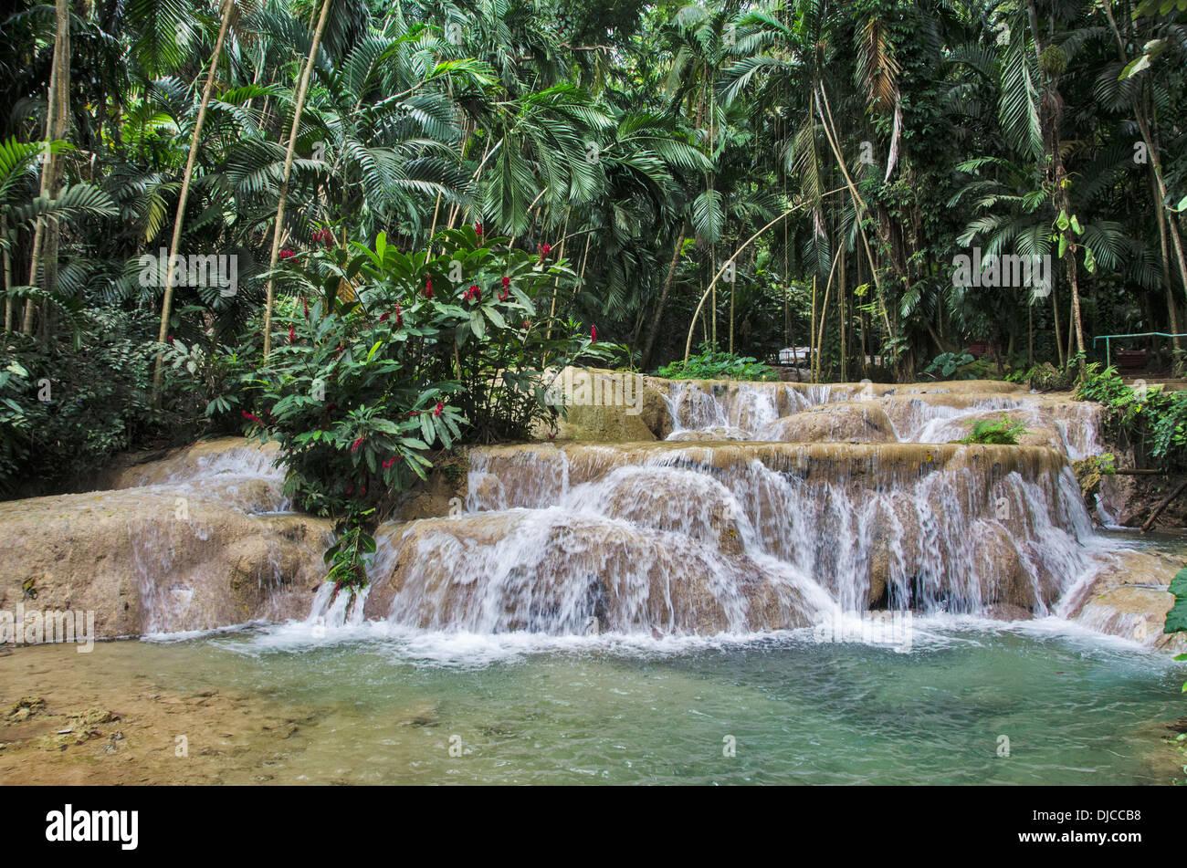 Waterfalls In Enchanted Gardens Ocho Rios Jamaica Stock