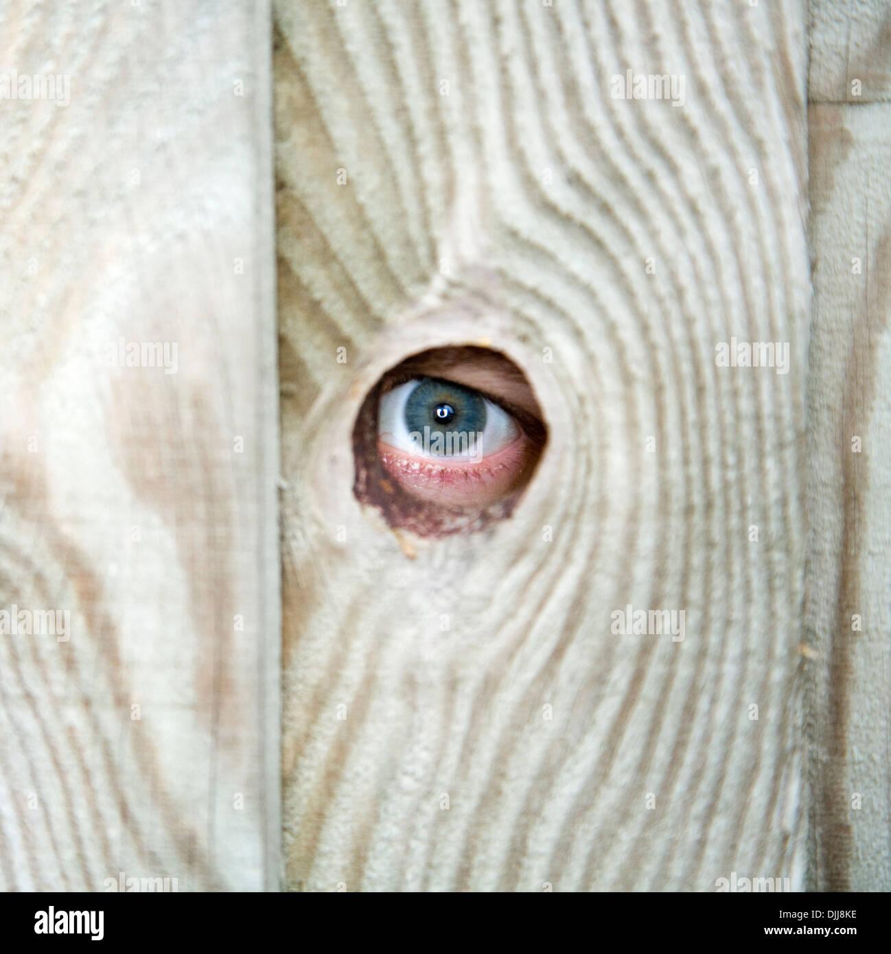 neighbor peeping