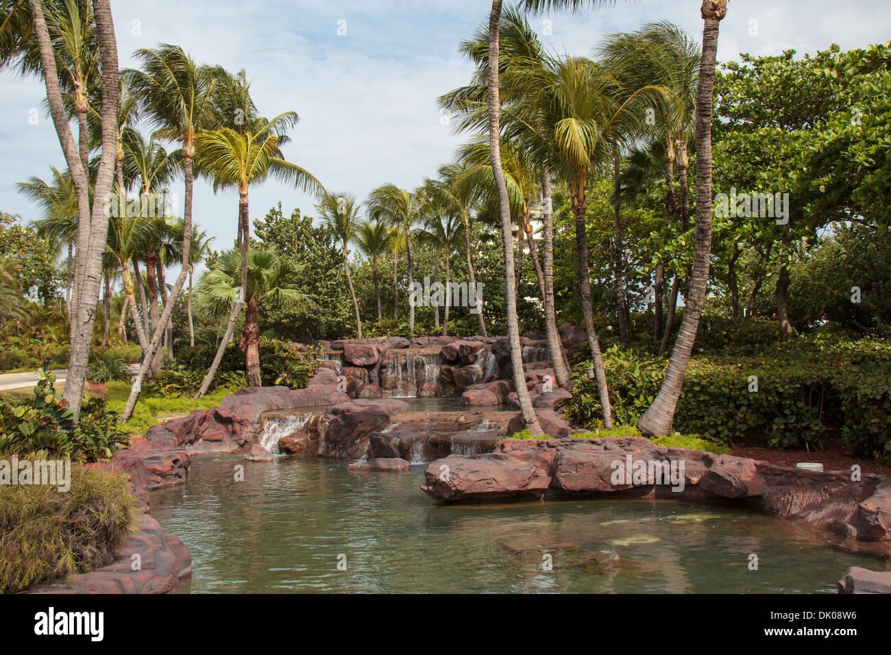 waterfalls radisson aruba resort casino & spa entrance from j.e
