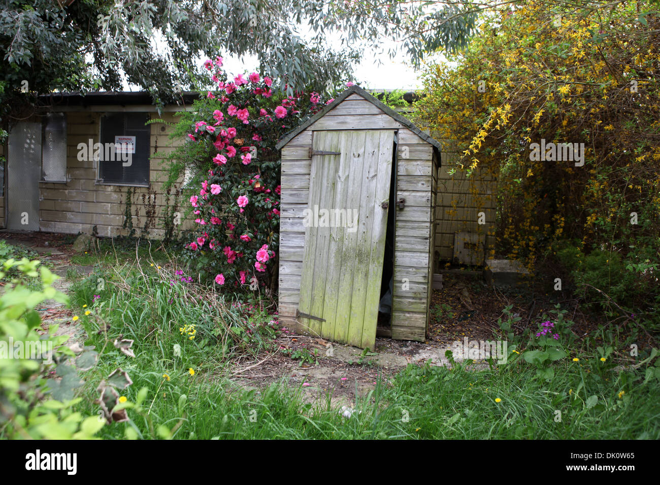 Abandoned shed in a post war prefabricated house garden on for Prefab garden house