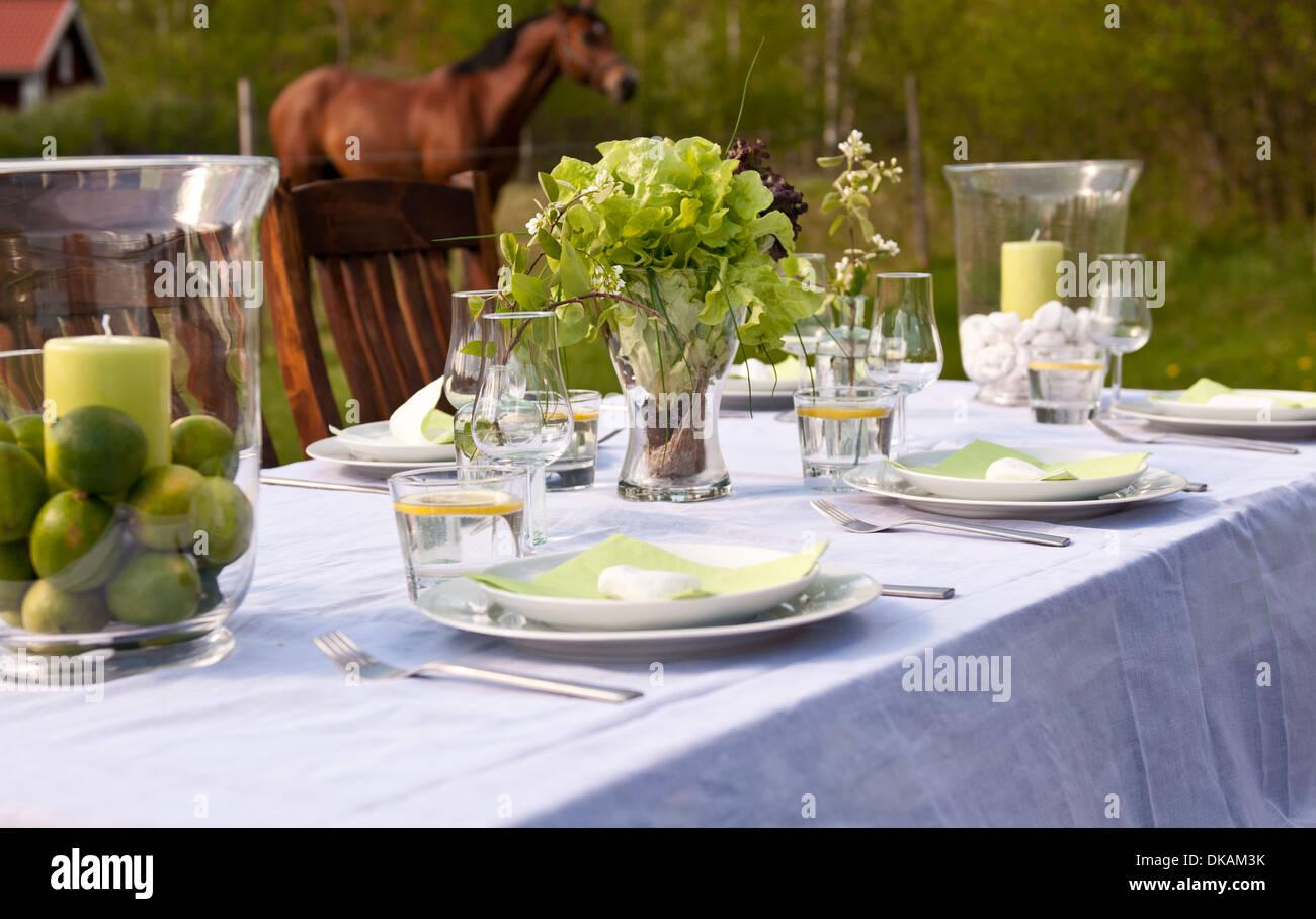 napkin party plates wine alfresco backyard brunch celebrate stock