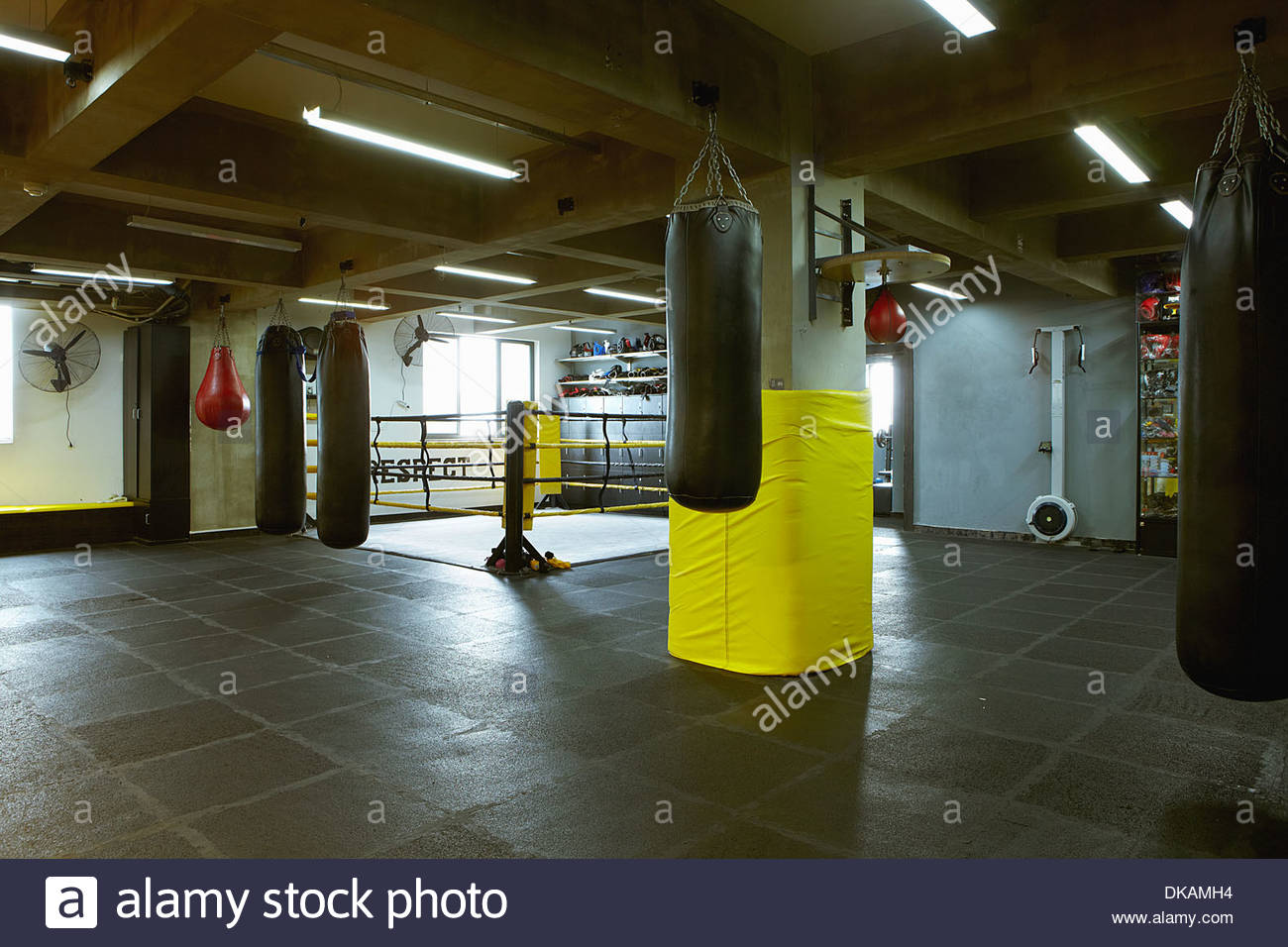 empty boxing gym - photo #11