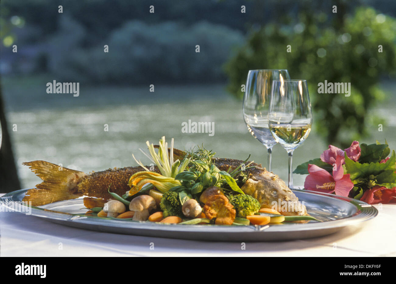 Fish dish with white wine stock photo royalty free image for White wine with fish