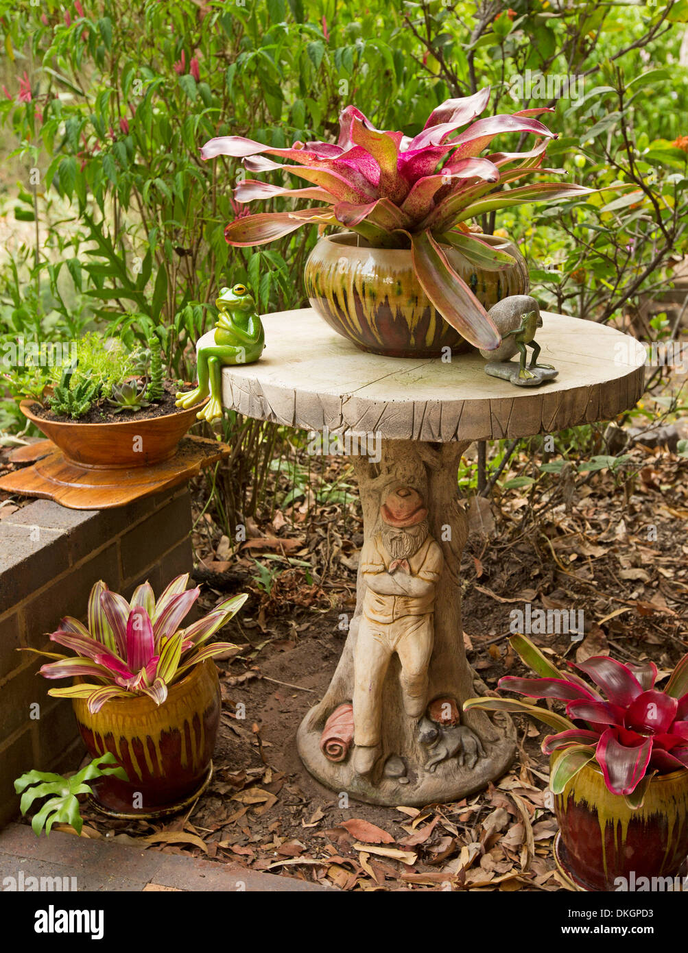 decorative concrete garden table with red leafed bromeliads in