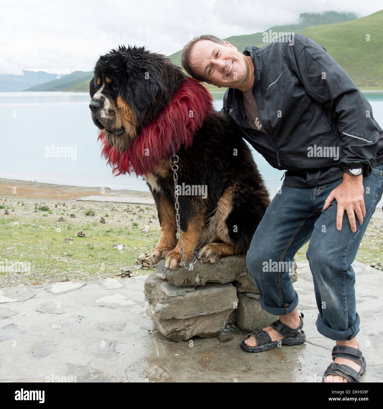 Pictures Of The Biggest Dog Breed