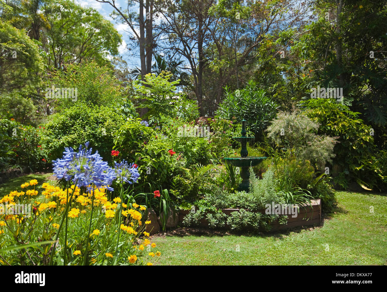 spectacular sub-tropical cottage garden - decorative fountain