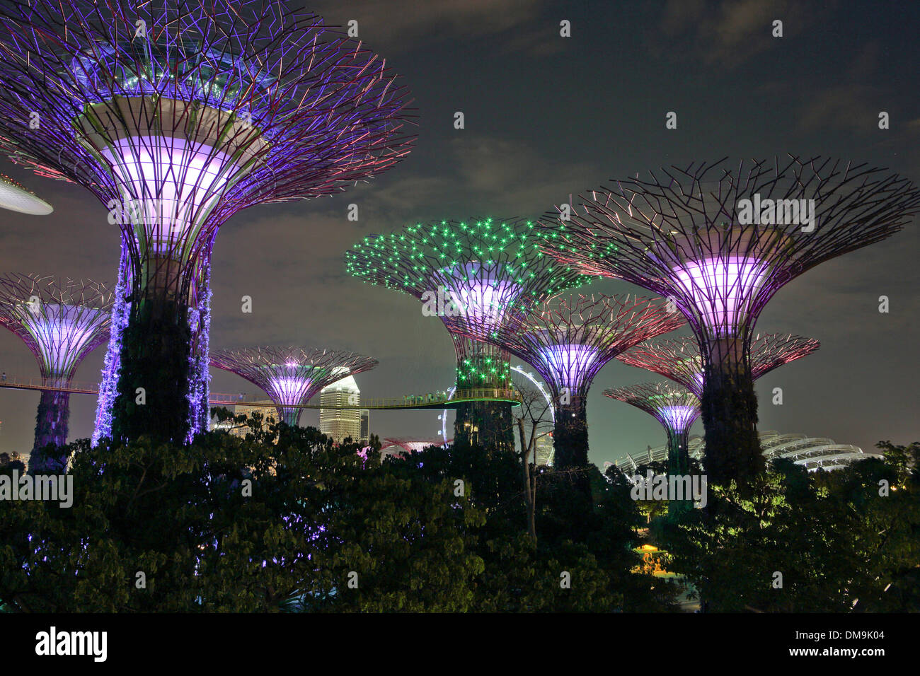 gardens by the bay and supertree grove light show at night in singapore - Garden By The Bay Fireworks