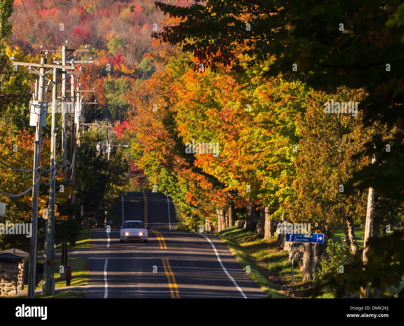 Route in the eastern cantons maple trees indian summer autumn route in the eastern cantons maple trees indian summer autumn colors estrie quebec canada sciox Choice Image