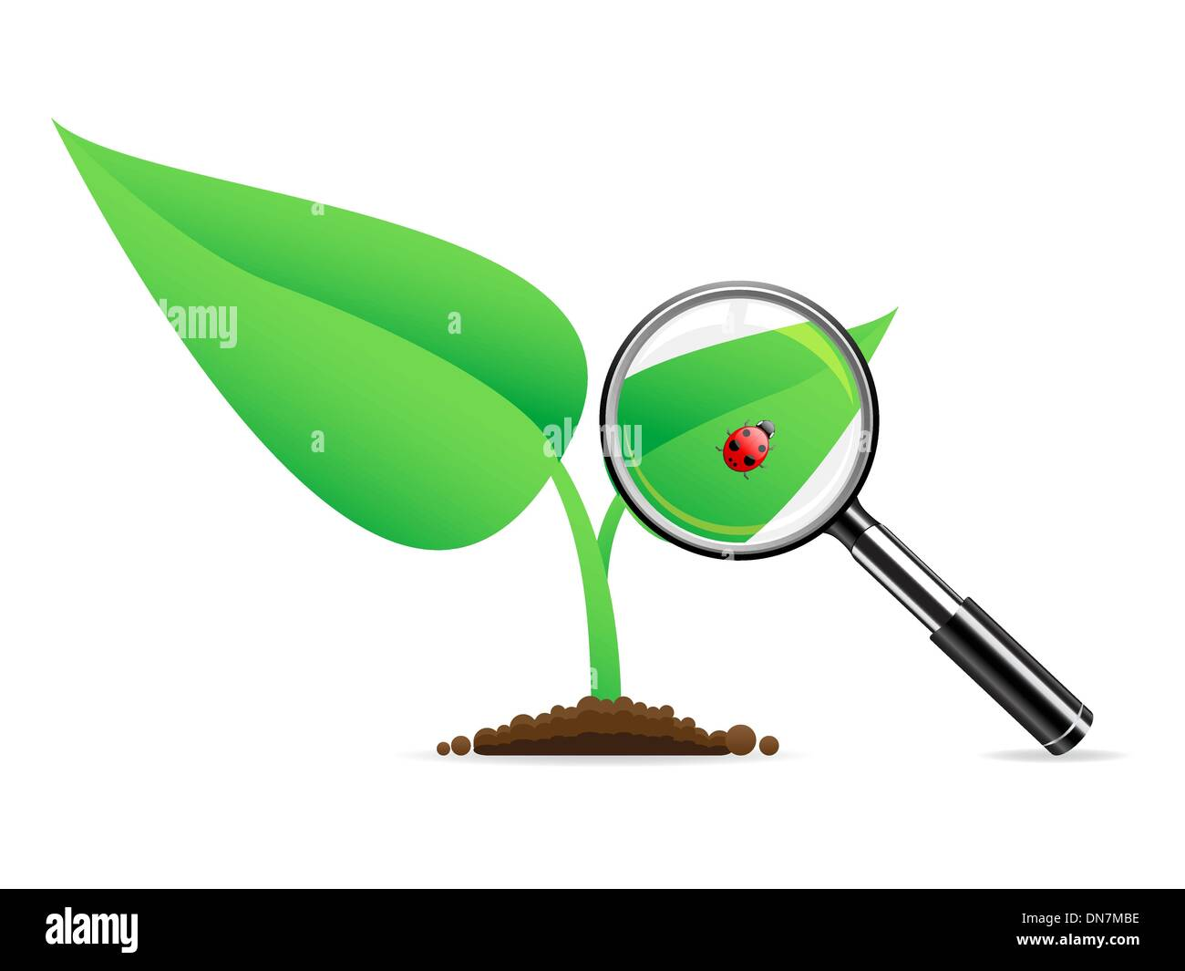 Magnifying glass an ladybug stock vector art illustration magnifying glass an ladybug pooptronica Gallery