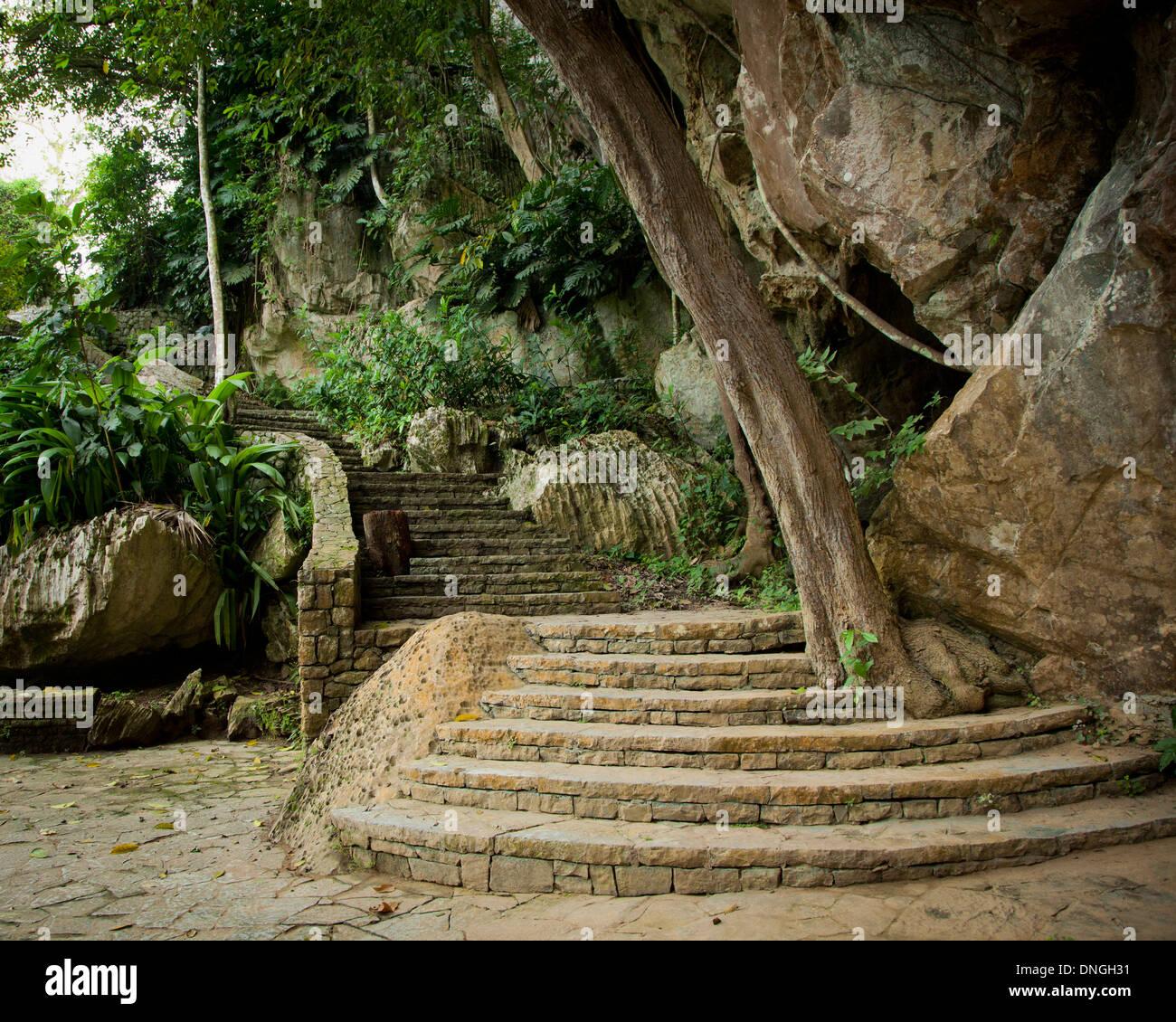 cueva de los portales in cuba stock photo royalty free image 64903525 alamy. Black Bedroom Furniture Sets. Home Design Ideas