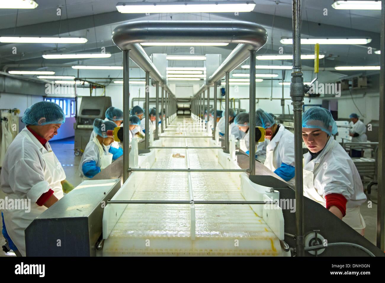 Islanssaga fish processing factory cod fishing for Cod fishing ri