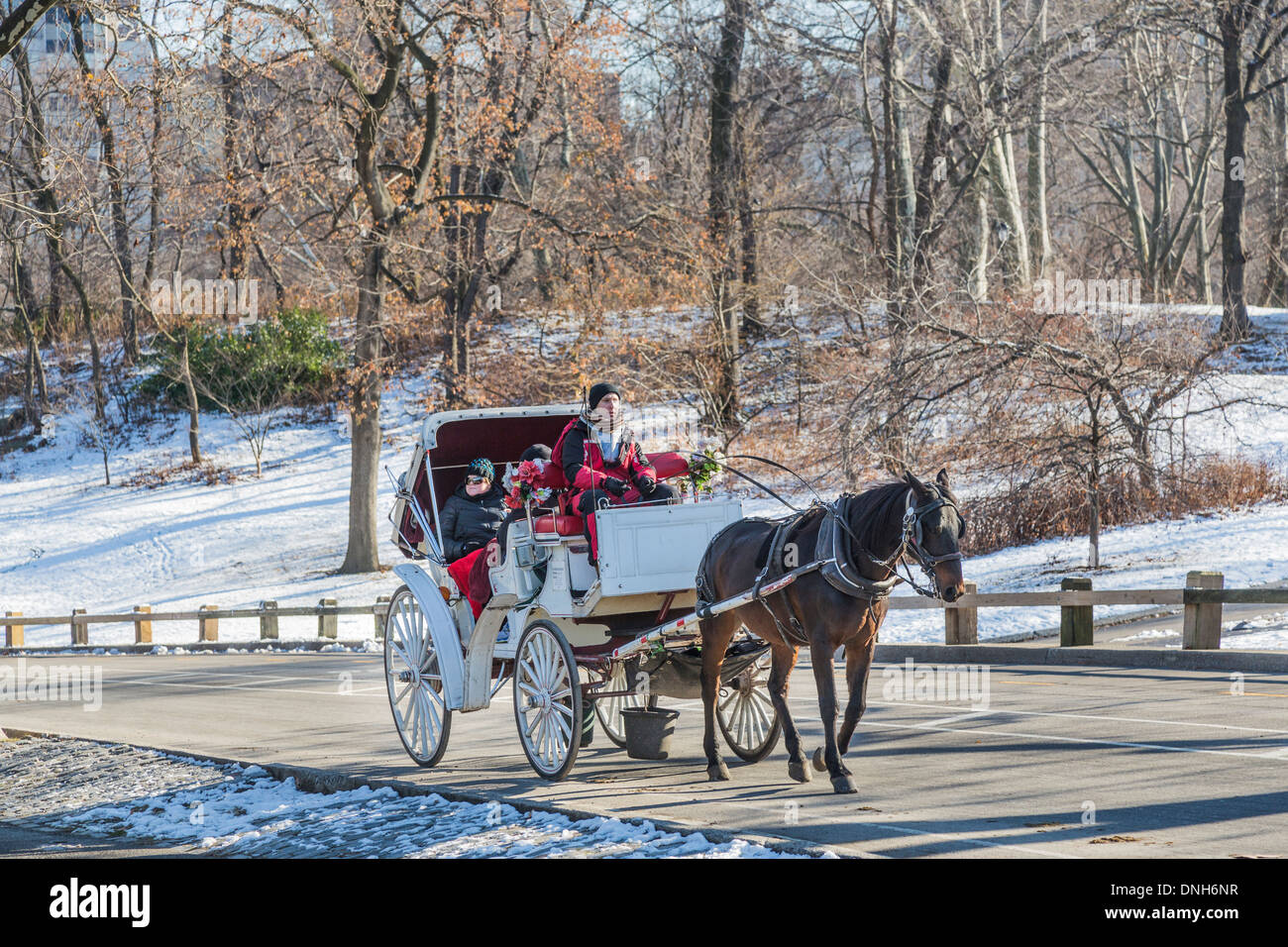 horse and carriage ride for tourists in the snow in winter in central stock photo 64917379 alamy. Black Bedroom Furniture Sets. Home Design Ideas