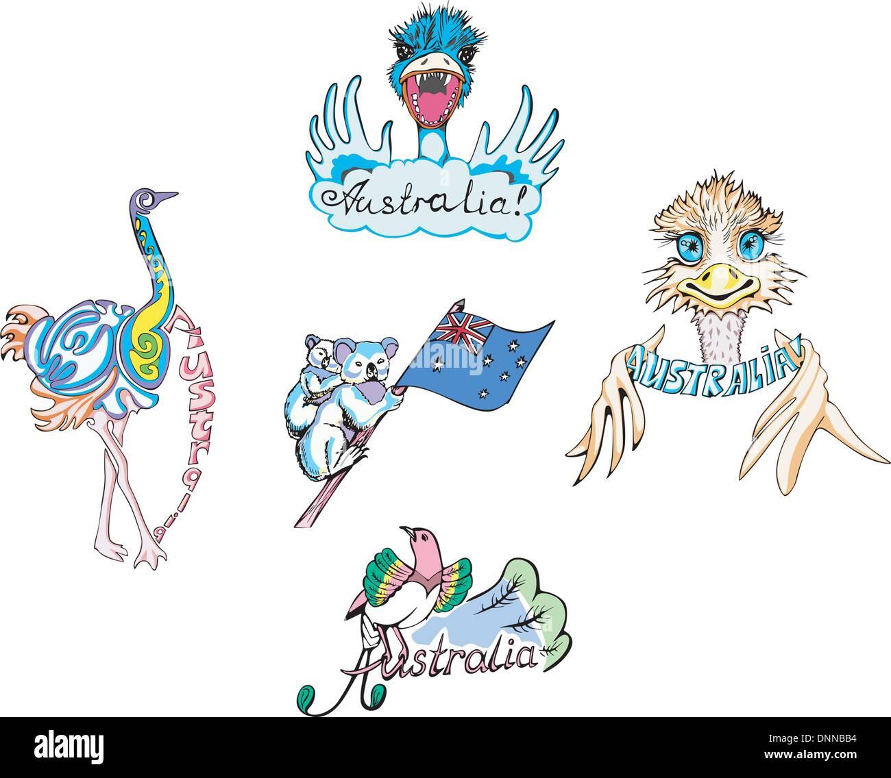 australia ostrich and koala set of color vector illustrations