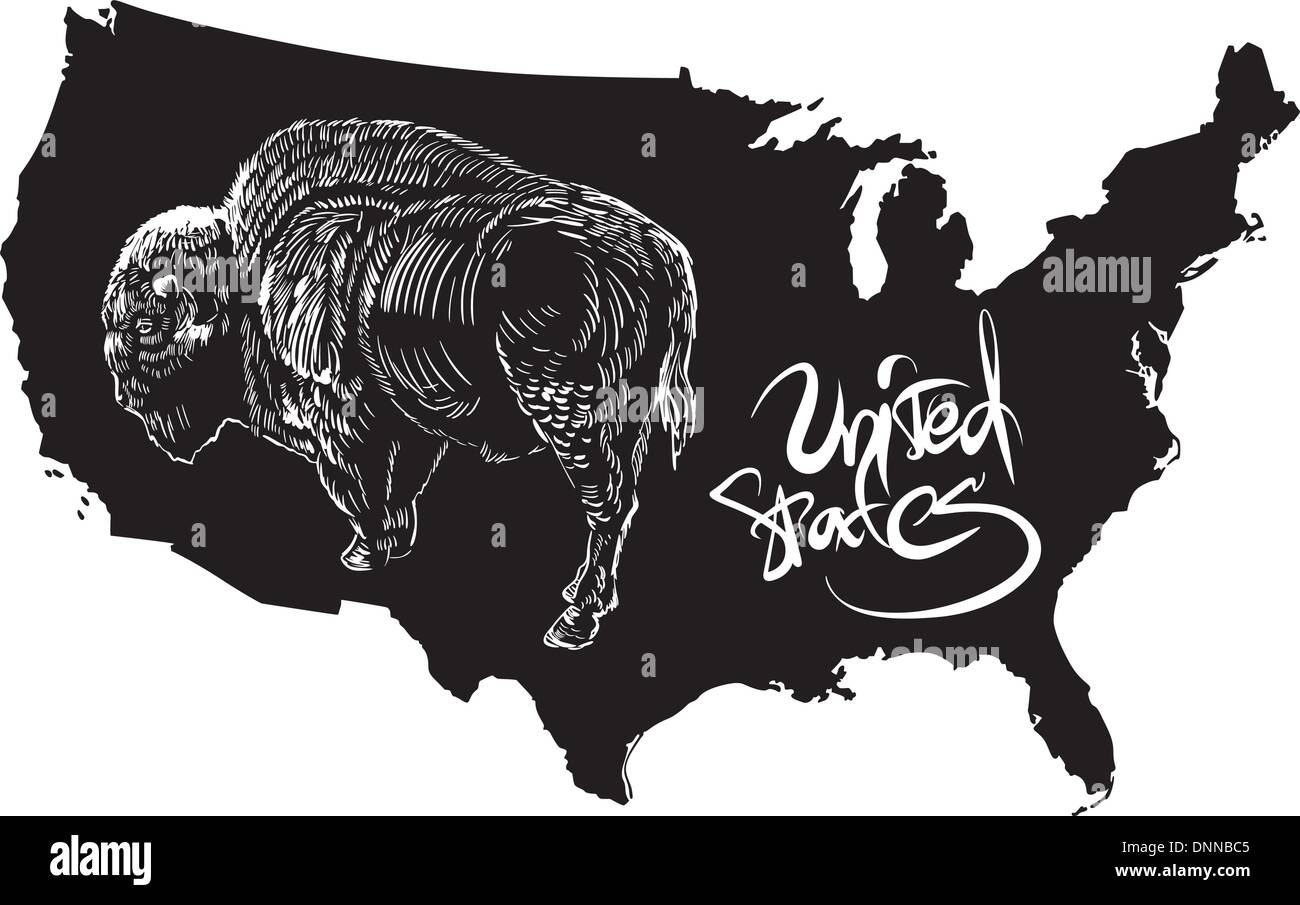 American buffalo and US outline map Black and white vector