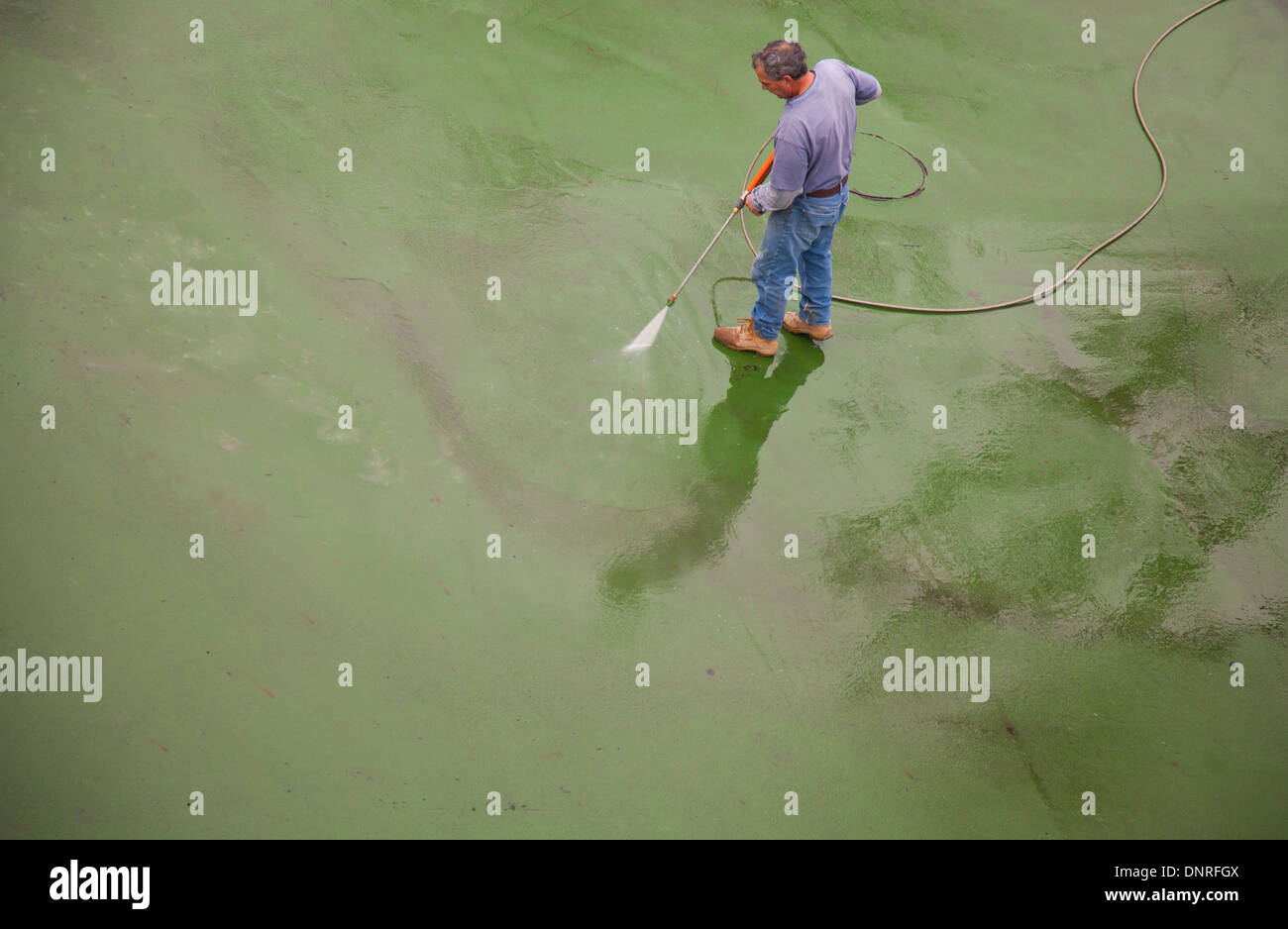 A keletnemet lanyok eneke   made in hungaria 457 - Rubber Mats Cleaning Stock Photo Man Cleaning Sports Rubber Mats Floor