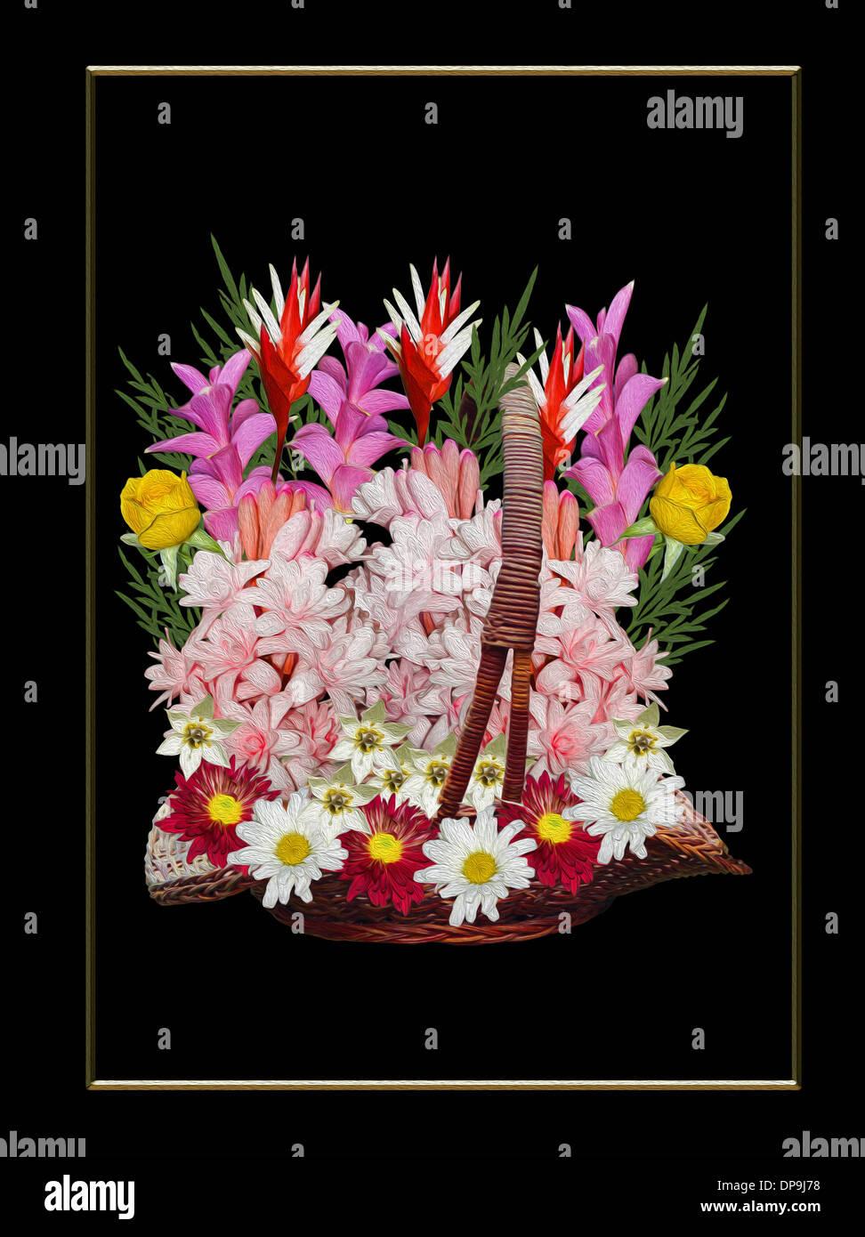 Colourful daisy like flowers choice image flower wallpaper hd colourful daisy like flowers images flower wallpaper hd colourful daisy like flowers choice image flower wallpaper izmirmasajfo