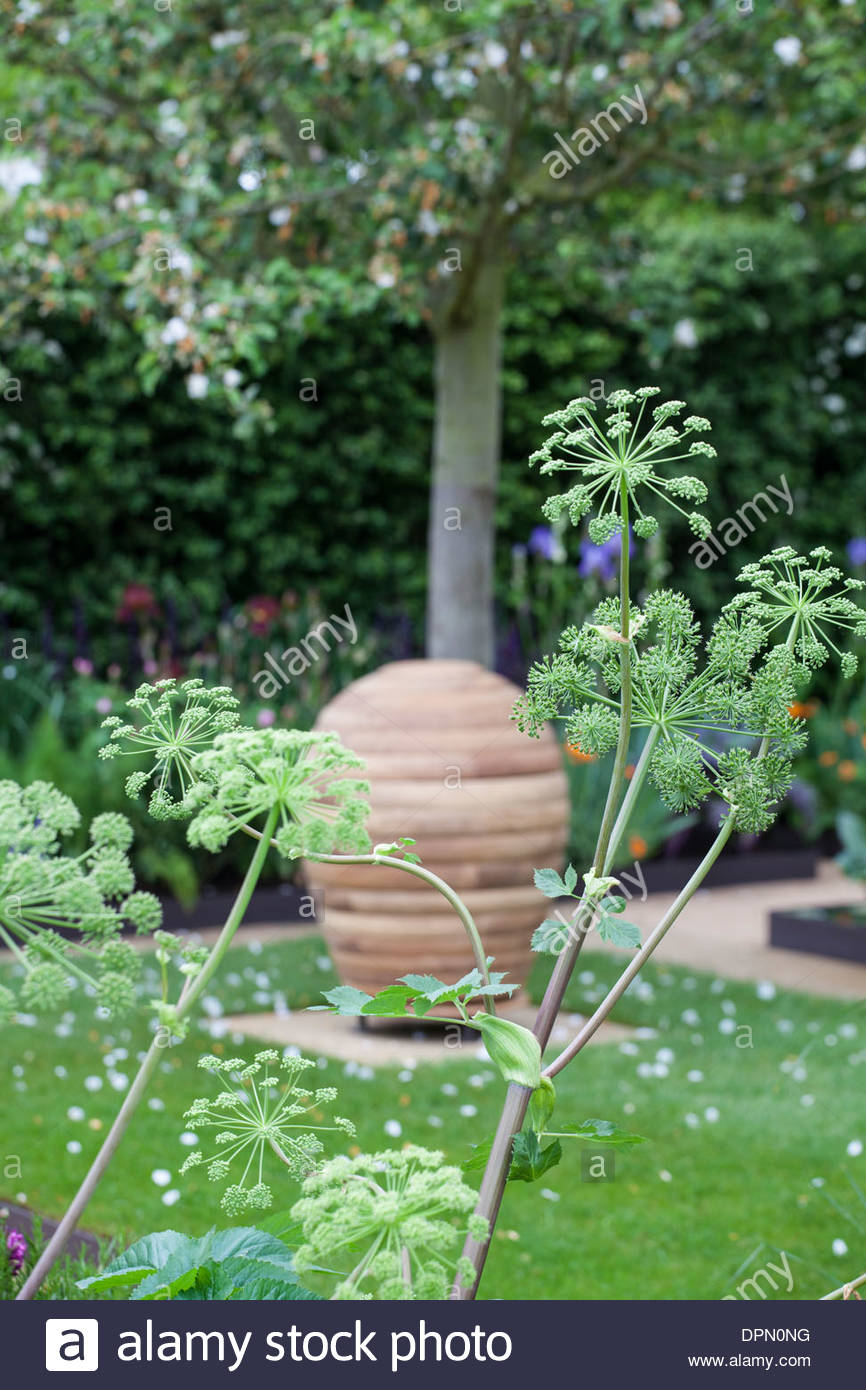 Chelsea flower show 2013 the homebase garden wooden for Garden trees homebase