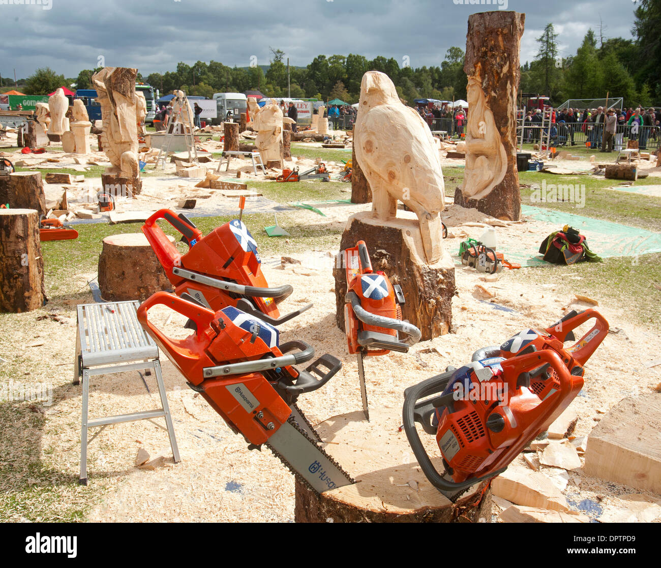 Carrbridge annual chainsaw wood carving competition
