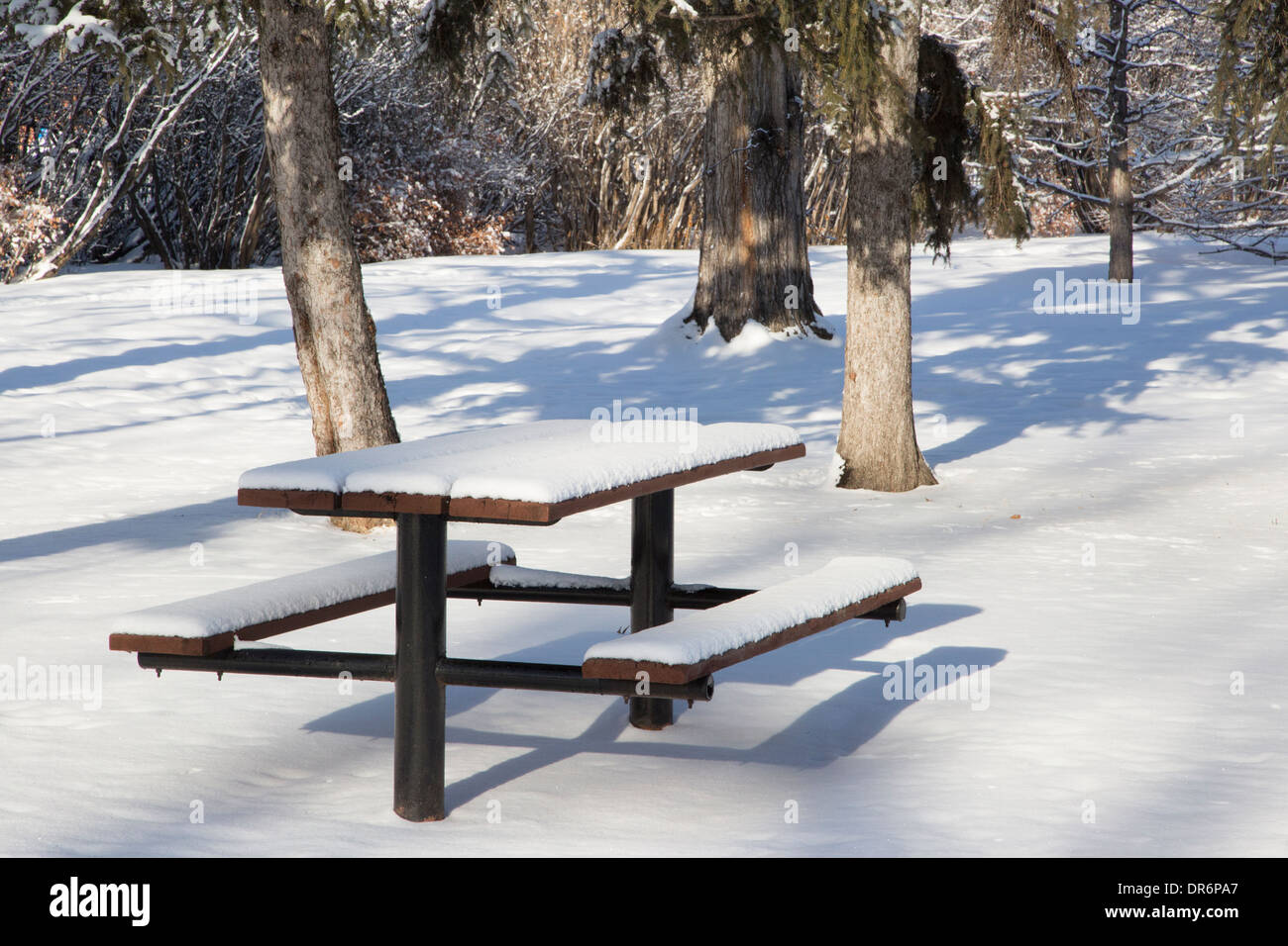 Picnic Table Covered By Snow Stock Photo Royalty Free