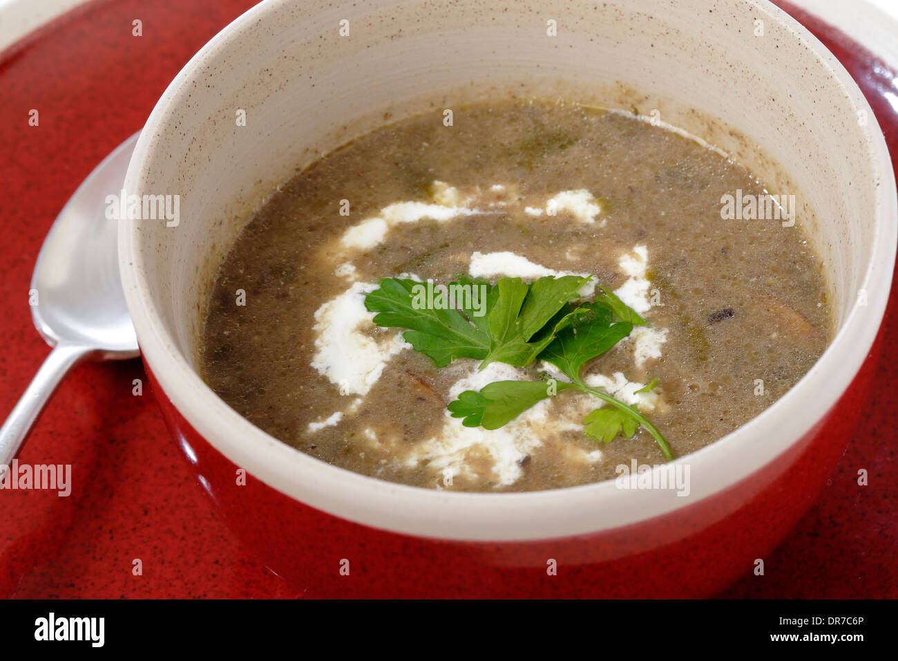 Homemade Cream Of Mushroom Soup In A Bow Garnished With Parsley